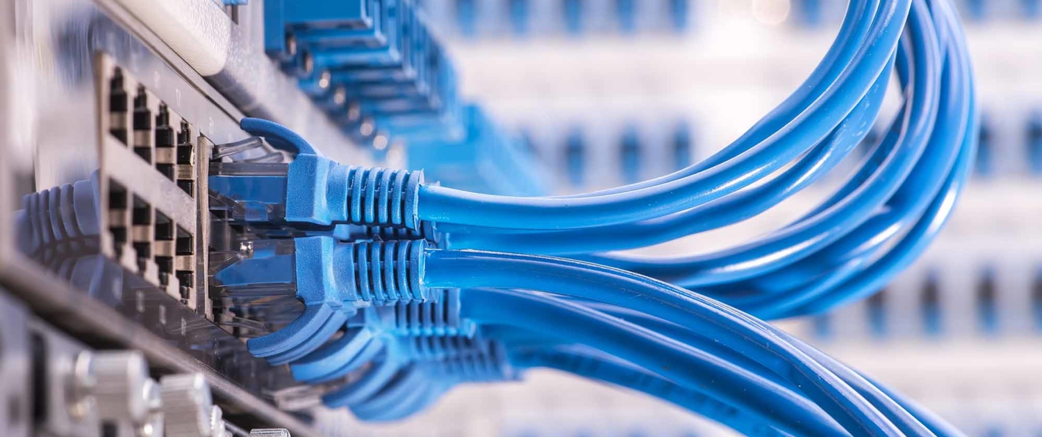Blue network cables plugged into a networking switch